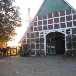 Steinau Hof 2005
