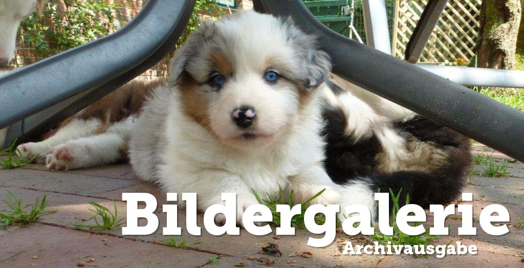 Bilderarchiv September 2014