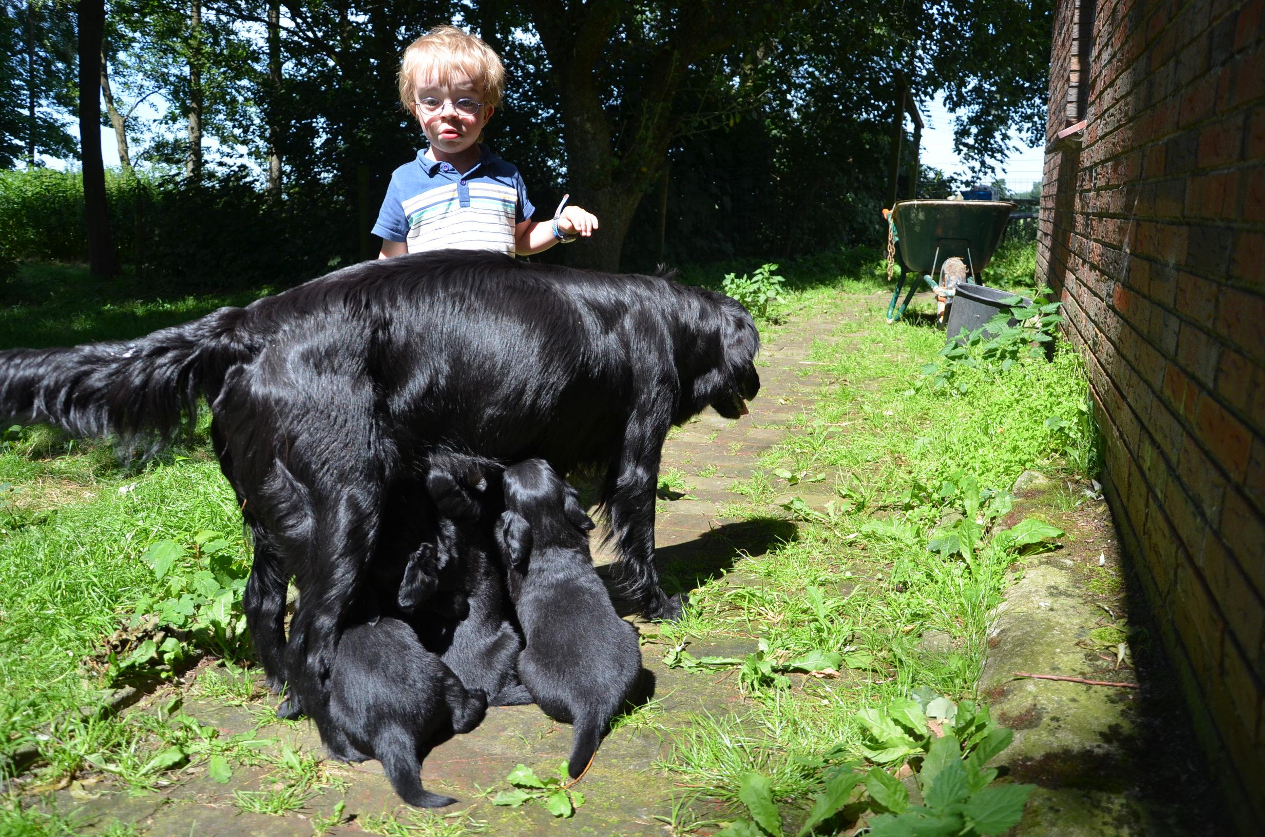 Stinchen Babys Juli 12 Portraits13 0104